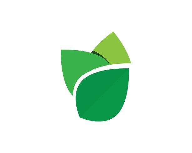 Image de vecteur vert unique de modèle entreprise logo agriculture