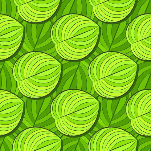 Motif tropical, à rayures et animal. Motif de lignes sans soudure et la texture de la morue. Fleur d'été moderne, feuille sur la forme abstraite de la brosse. Vecteur tropical