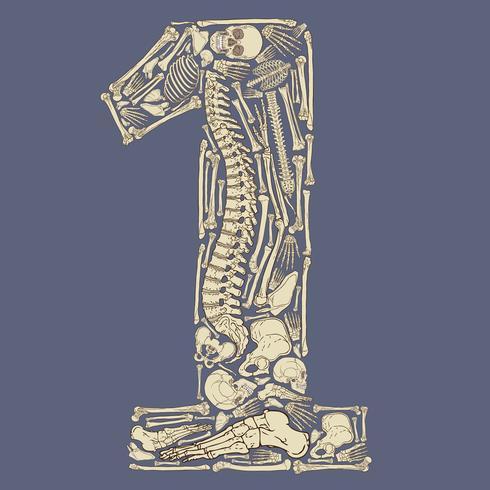 Squelette en forme de numéro un vecteur