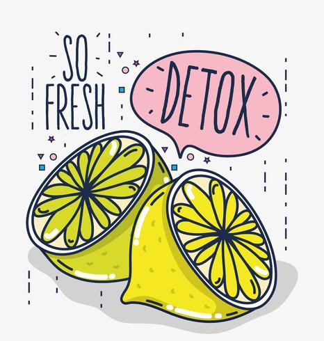 Détox et fruits frais vecteur