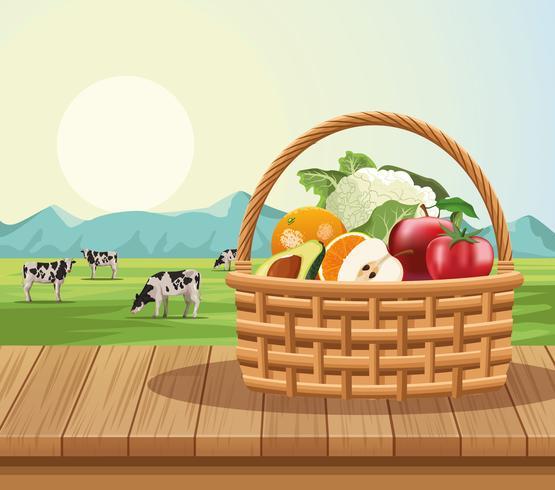 Fruits et légumes dans le panier vecteur
