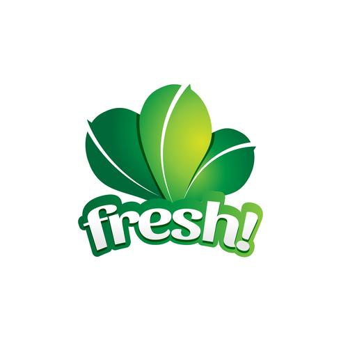 Logo de légumes à feuilles vertes fraîches vecteur