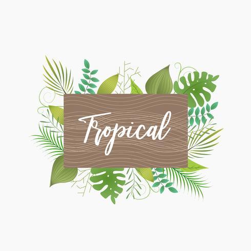 Tableau des noms de cadre de feuilles tropicales vecteur