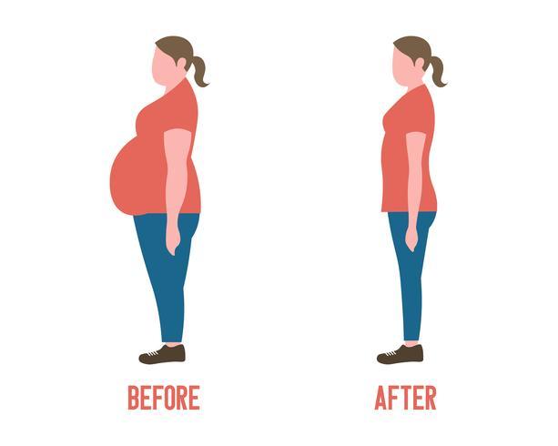 La silhouette des femmes avant et après la perte de poids vecteur