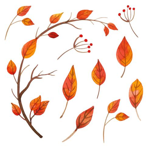Collection de feuilles orange aquarelle vecteur