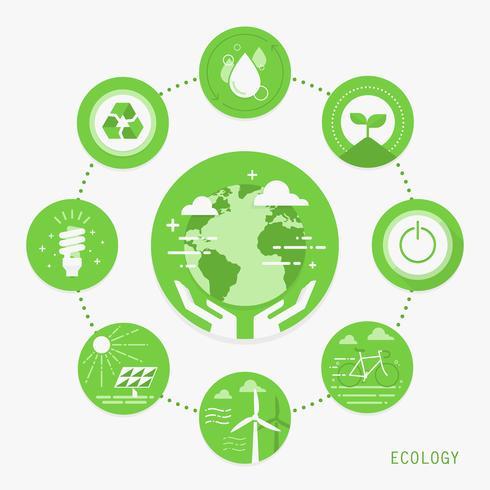 Écologie Infographique vecteur