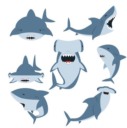 Ensemble requin blanc et requin marteau vecteur