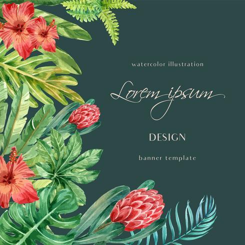 Aquarelle tropicale botanique vecteur