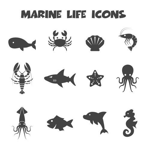 icônes de la vie marine vecteur