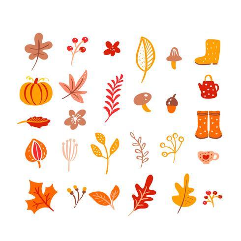 Éléments d'automne. Champignon, gland, feuilles d'érable et citrouille isolé sur fond blanc vecteur