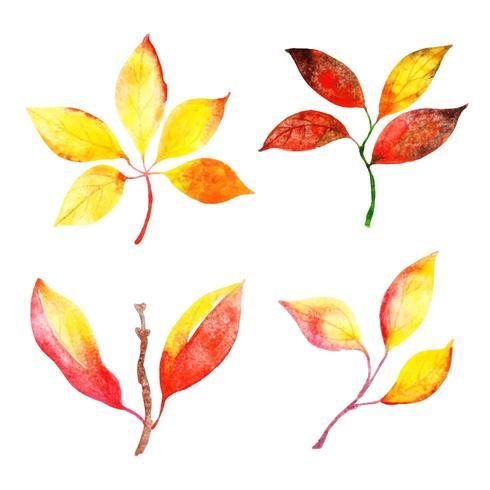 Collection de feuilles d'automne vecteur