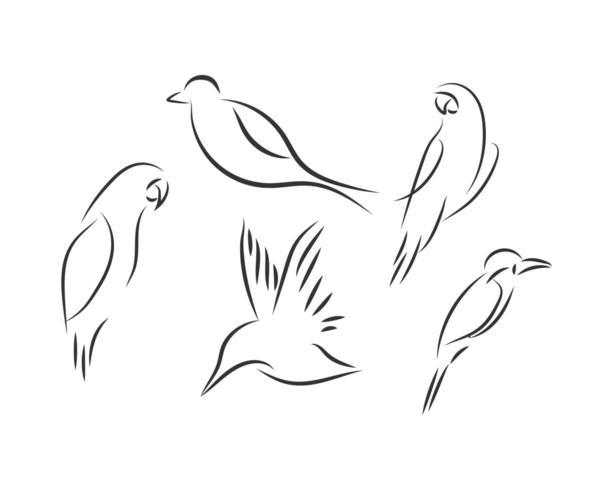 Ligne logo ensemble oiseau vecteur