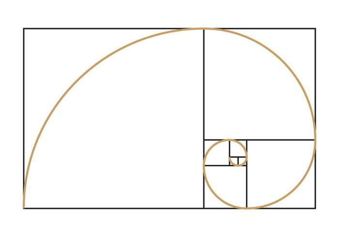 Symbole en spirale de Fibonacci vecteur
