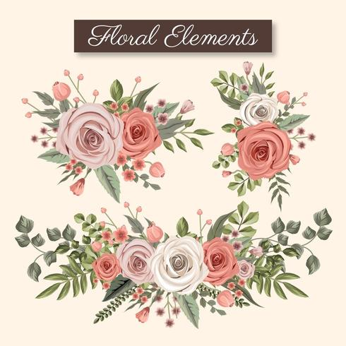 Éléments floraux roses et beiges vecteur