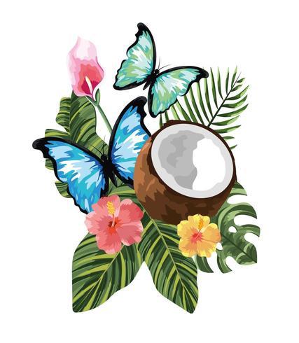 papillons avec noix de coco tropicale et fleurs avec feuilles vecteur