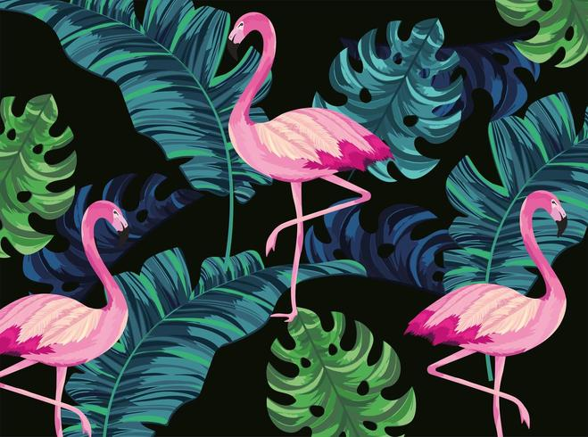 Flamants tropicaux avec fond de feuilles exotiques vecteur