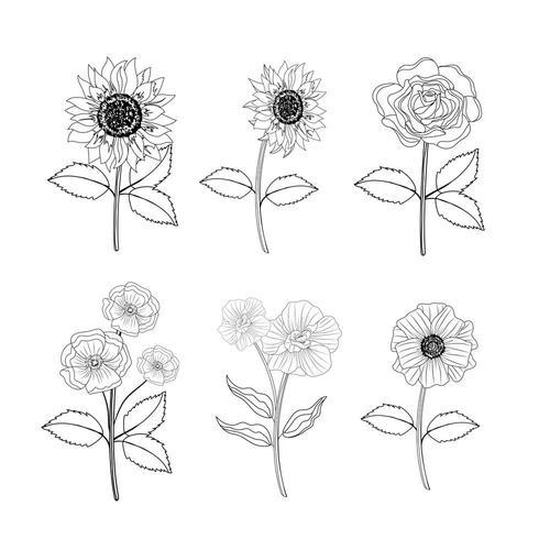 définir des plantes tropicales de fleurs et de roses avec des feuilles vecteur