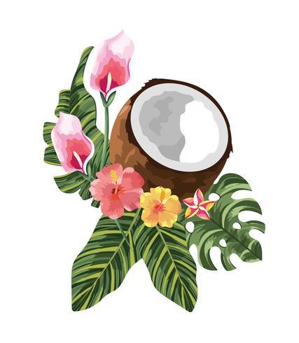 fleurs tropicales avec noix de coco et feuilles exotiques vecteur