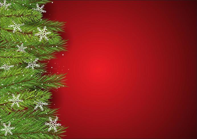 Fond de Noël avec des branches d'arbres de pin et des flocons de neige vecteur