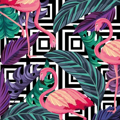 feuilles avec fond flamand tropical et chiffres vecteur