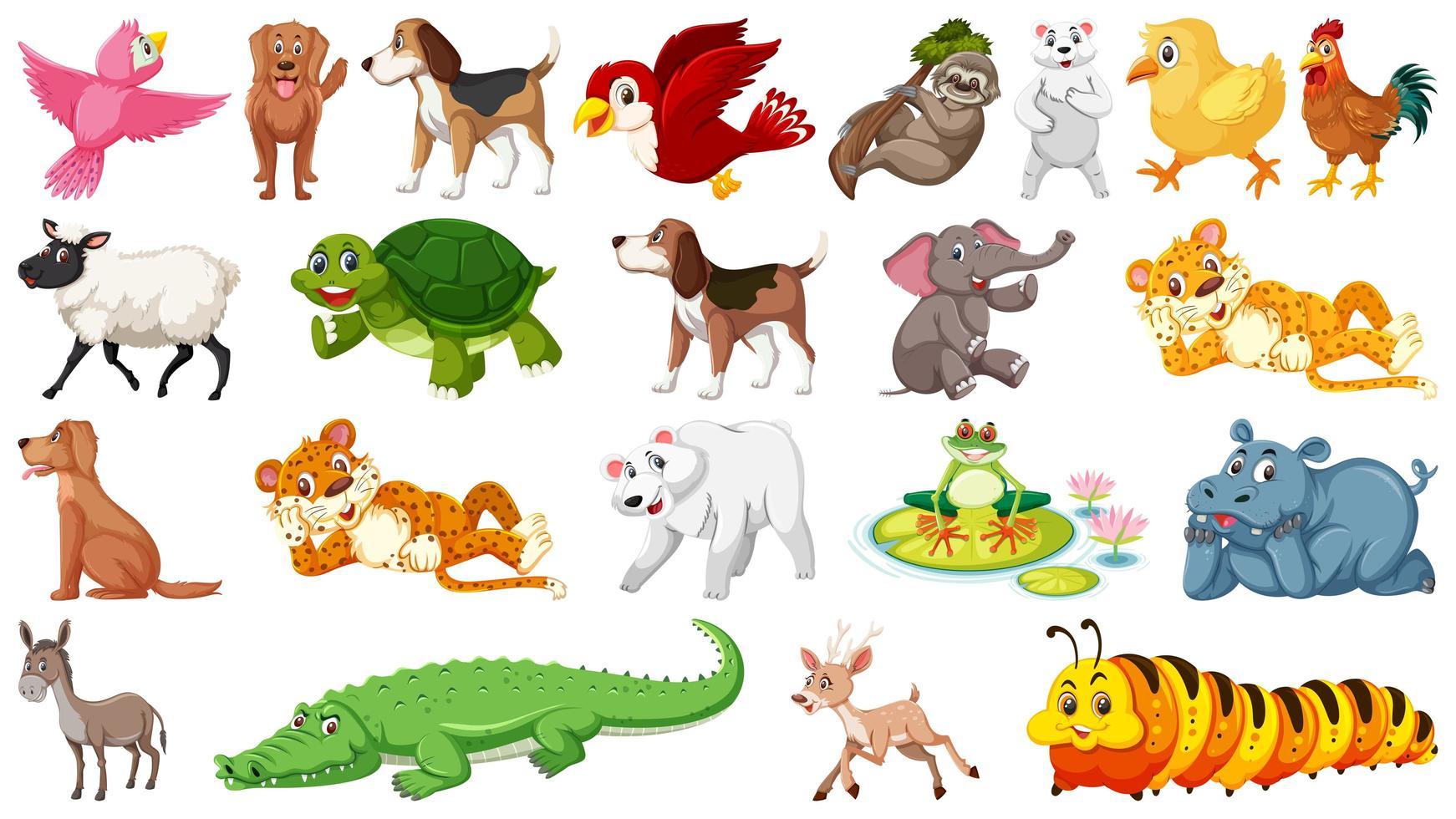 Ensemble de différents animaux sauvages vecteur