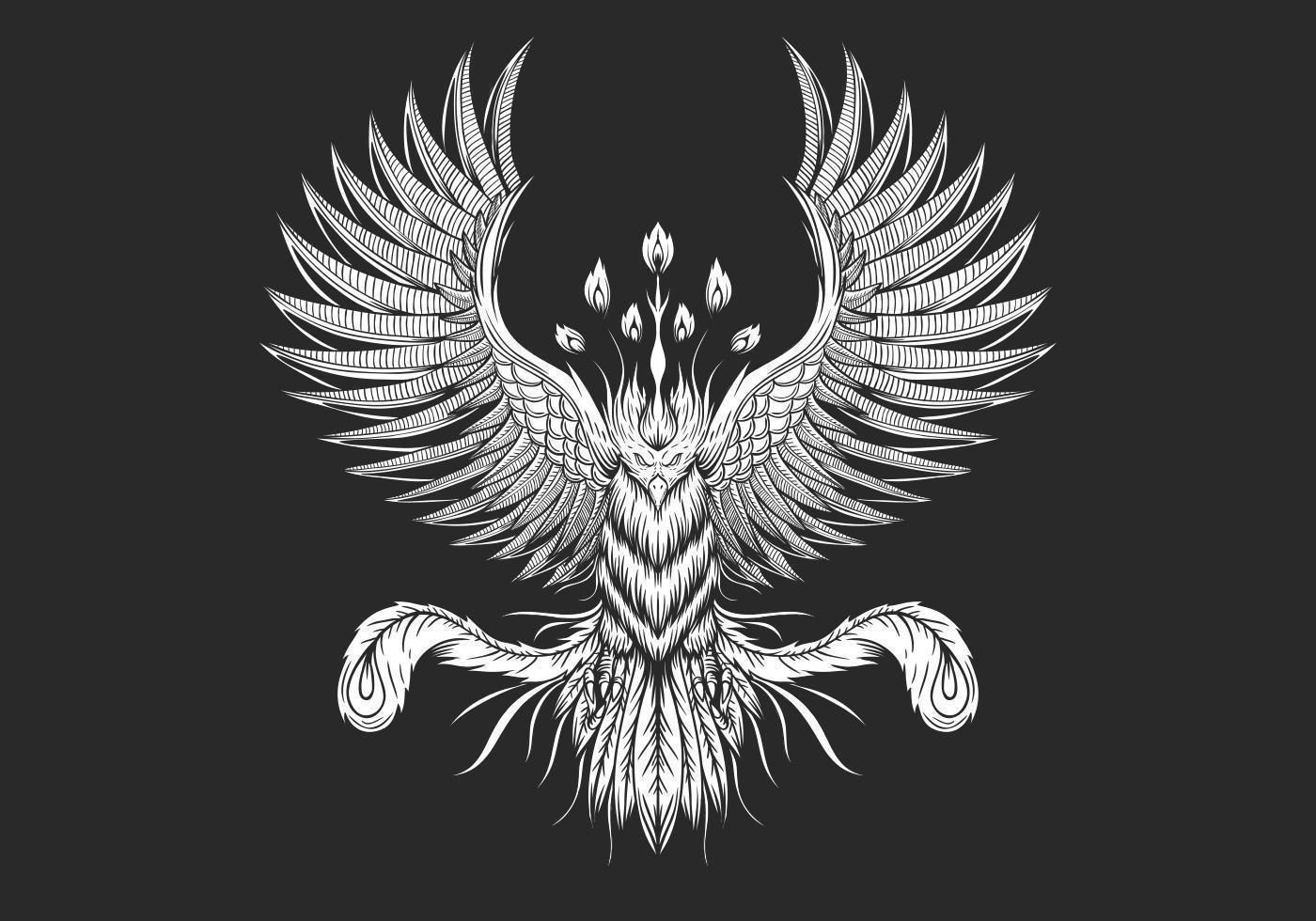 Conception Phoenix Bird vecteur