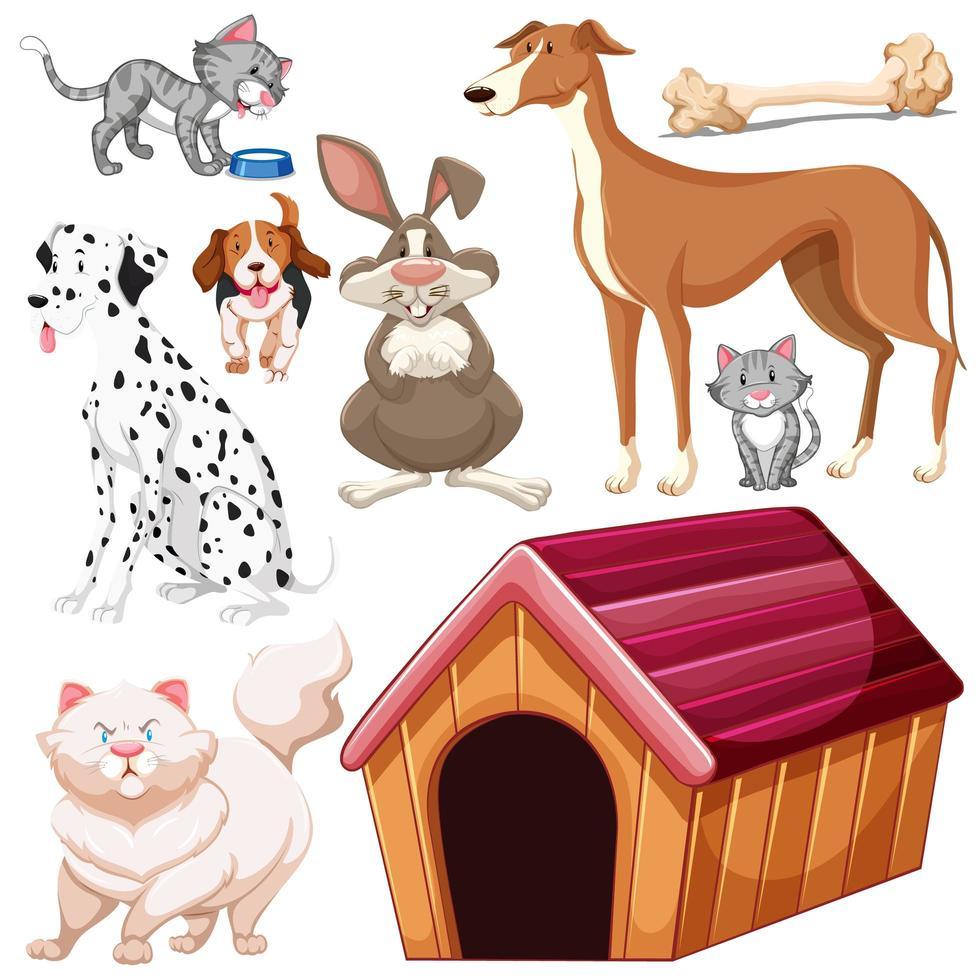 ensemble d'animaux de compagnie différents isolés vecteur