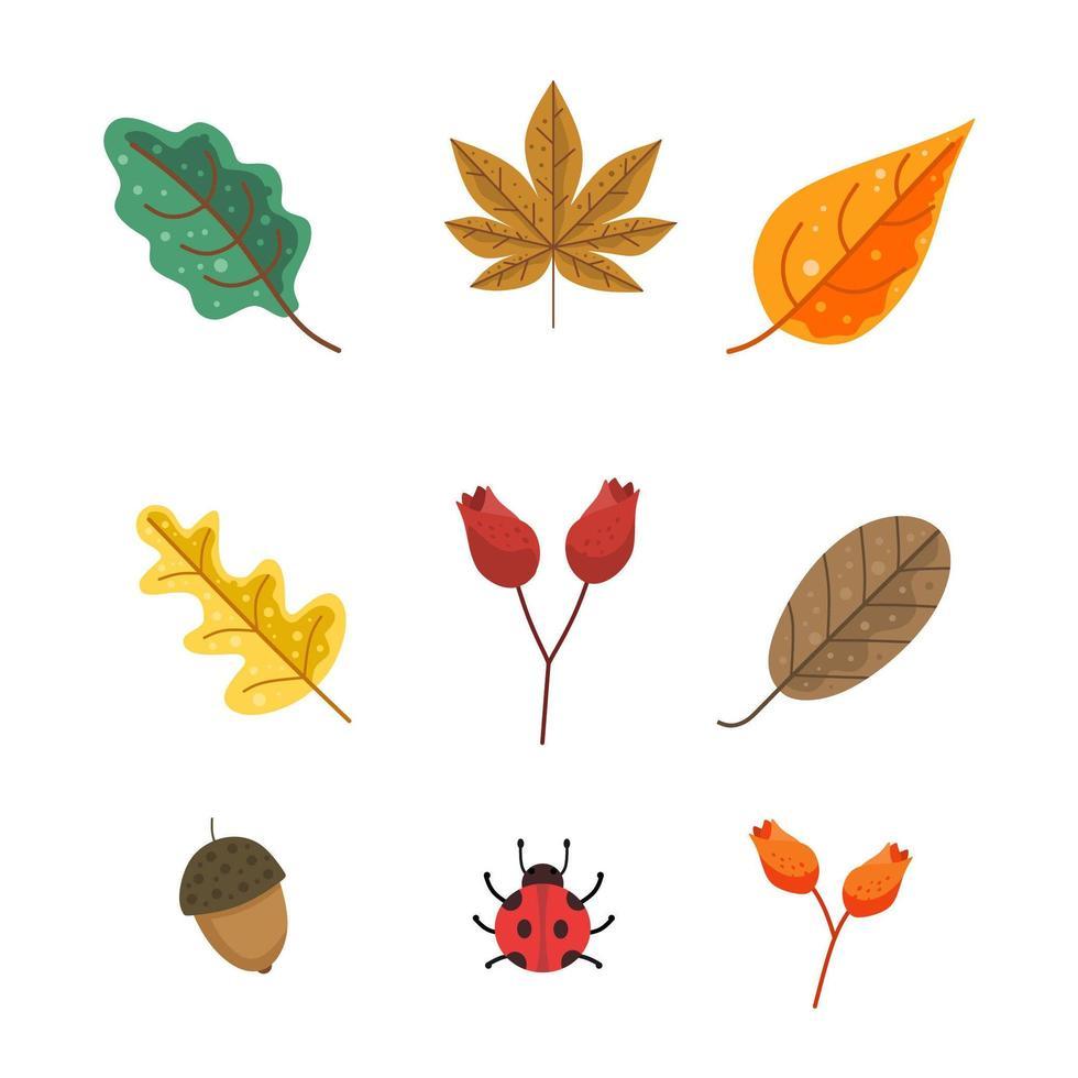 pack de feuilles d'automne vecteur