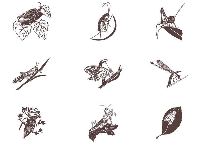 Insectes sur les feuilles Vector Set