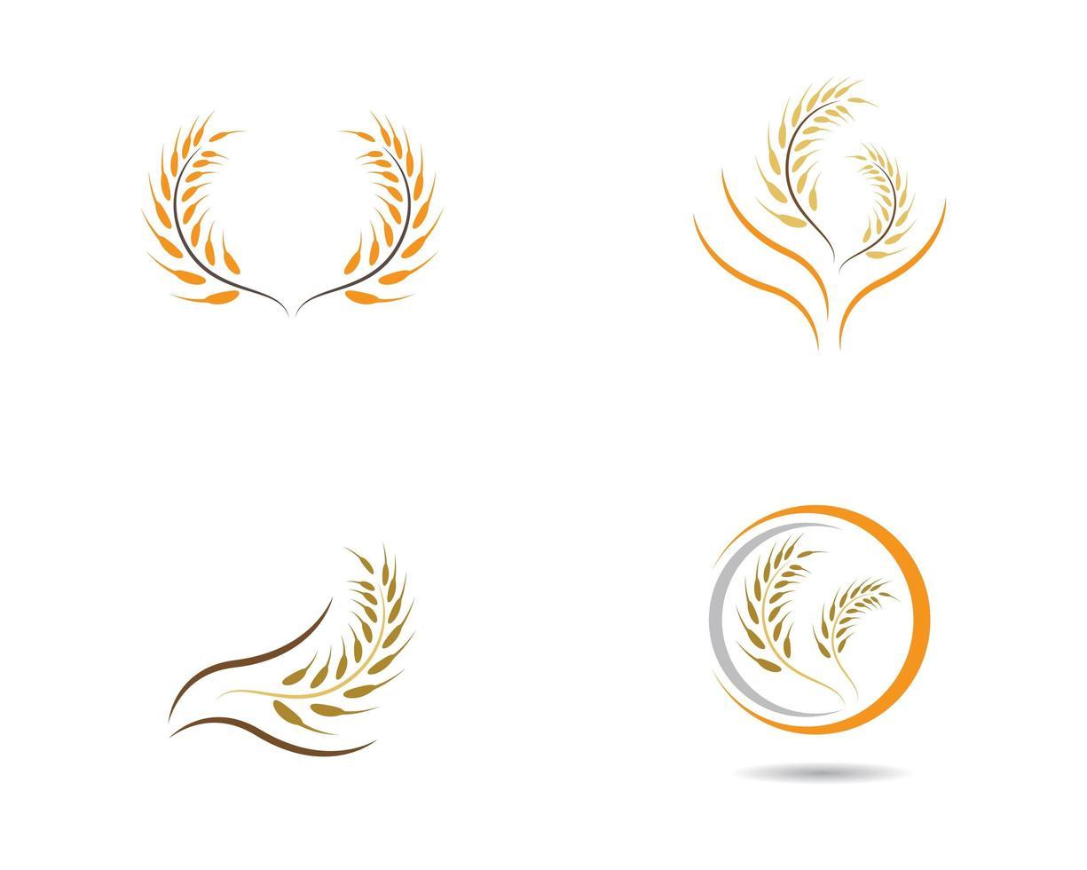 jeu d'icônes de blé ou de céréales vecteur