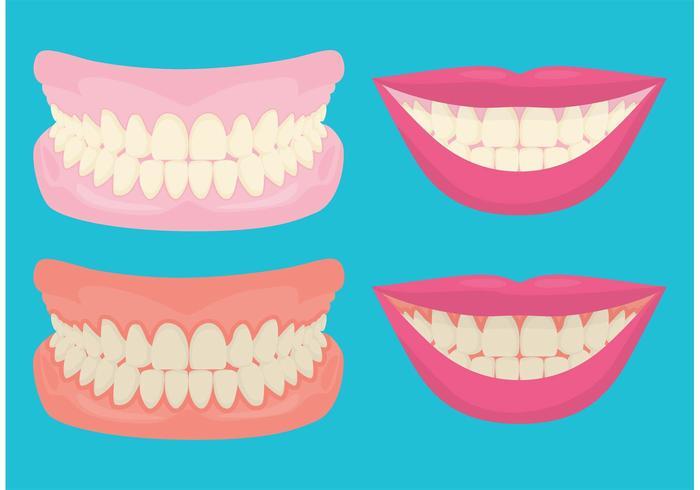 Dents et gencives souriantes vecteur