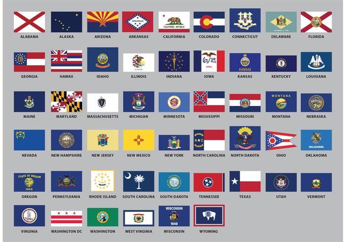 Vecteurs de drapeau de l'État des États-Unis vecteur