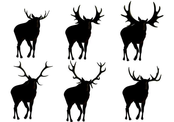 Vecteurs Silhouette Moose vecteur
