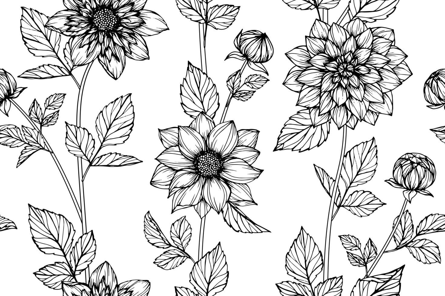 modèle sans couture de fleur de dahlia dessiné à la main vecteur