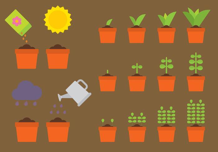 Plantes vectorielles en croissance vecteur
