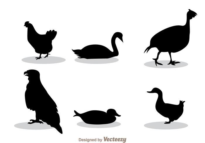 Poule silhouette noire vecteur