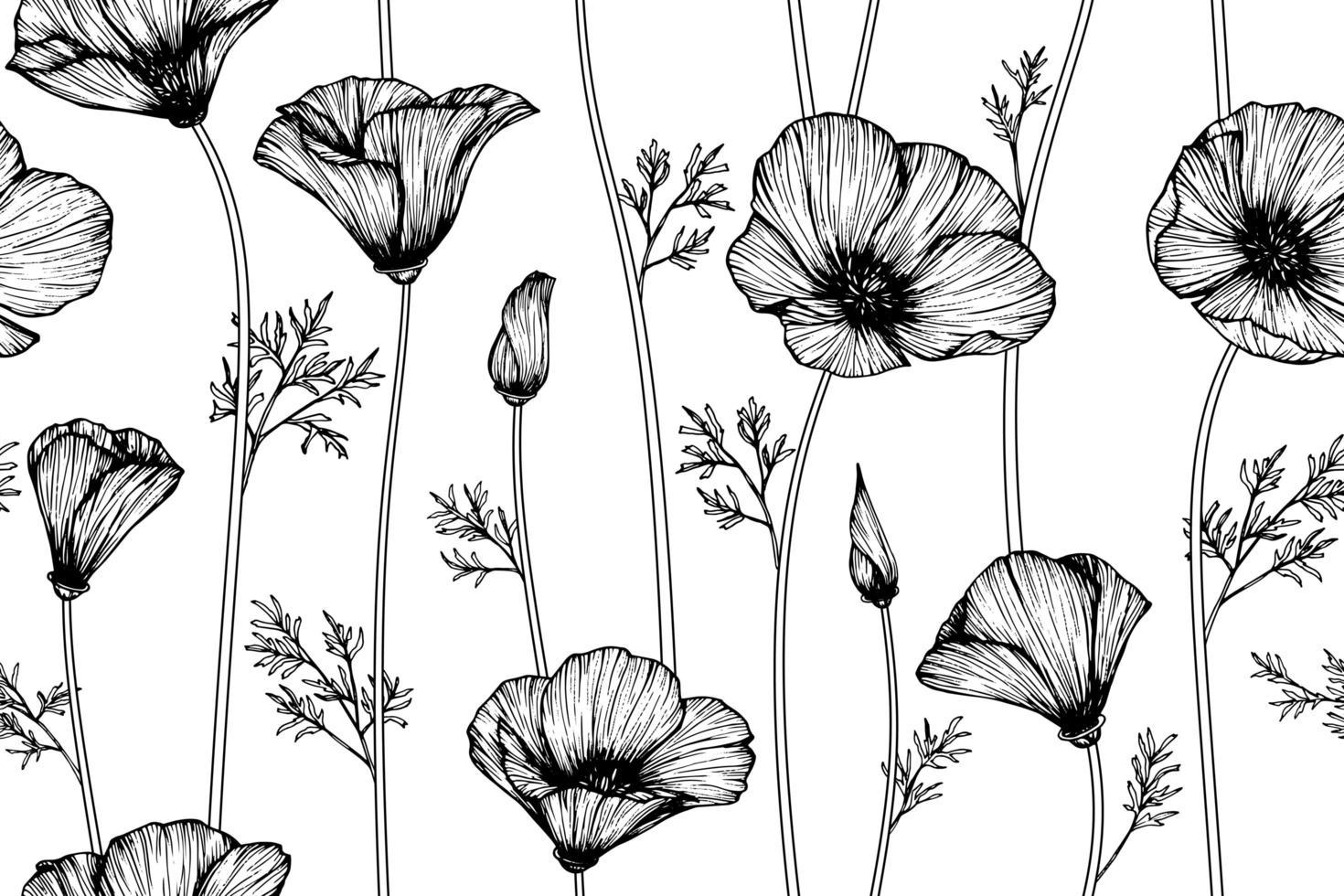 fleurs de pavot de Californie vecteur