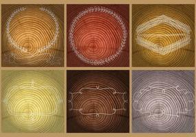 Modèles d'anneaux d'arbres vecteur