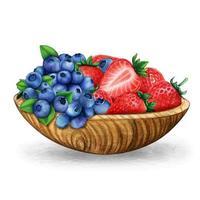 bol aquarelle avec bleuets et fraises vecteur
