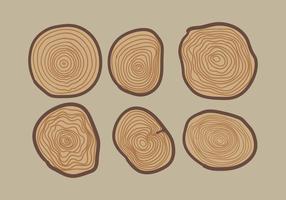 Anneau d'arbre à vecteur