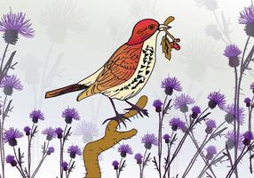 Oiseau sur le chardon vecteur