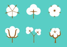 Vecteur libre de plantes de coton