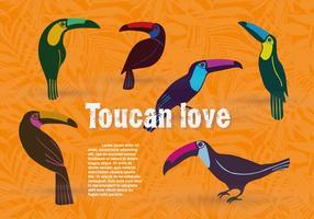 Ensemble gratuit de fond de vecteur d'oiseaux Toucan