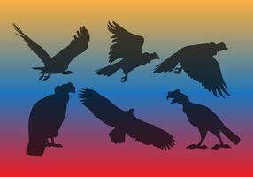 Vecteur Condor