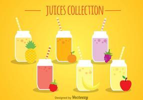 Collection de jus de fruits vecteur
