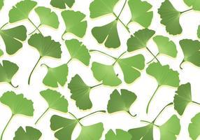 Vecteurs de feuilles de ginko vecteur