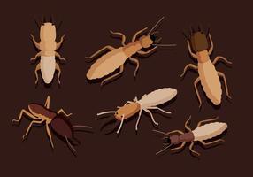 Vecteurs de termites vecteur