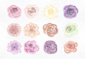 Fleurs aux aquarelles vectorielles vecteur