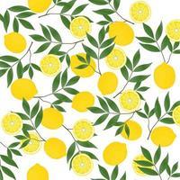 motif citron jaune vecteur