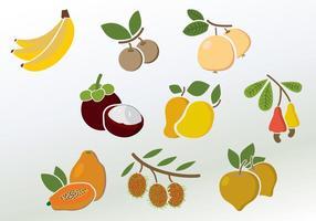 Ensemble de vecteurs de fruits colorés